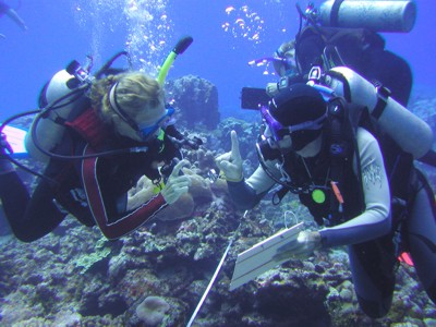 Kos_coral_survey